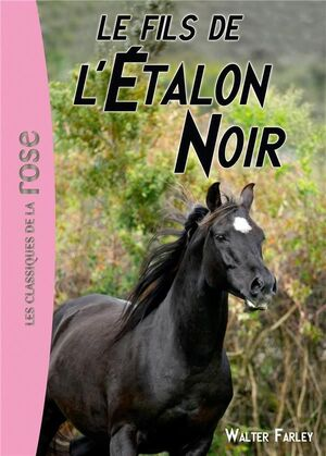 LES FILS  DE L'ETALON