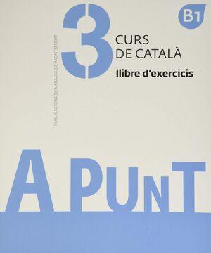 A PUNT 3. CURS DE CATALA. LLIBRE D'EXERCICIS